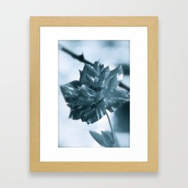 """""""Rose Theatre"""" by ICA PAVON Framed Art Print"""