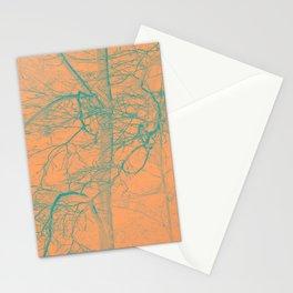 1657 Stationery Cards