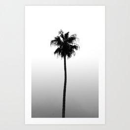 Tropical Darkroom #149 Art Print