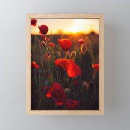 poppy feild Framed Mini Art Print