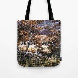 Fall in Patagonia, Argentina Tote Bag