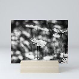 Singularity - Black & White Mini Art Print