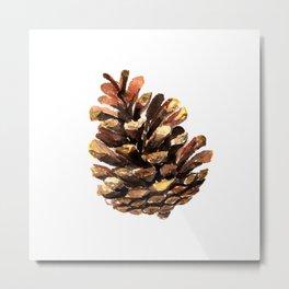 Fir cone Metal Print