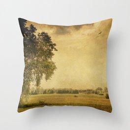 Prairie Field Throw Pillow
