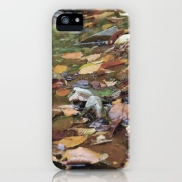 """""""Warm fall day"""" iPhone Case"""