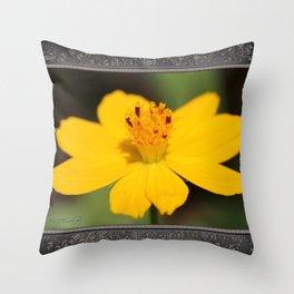 Cosmos Sulphureus named Ladybird Dwarf Lemon Throw Pillow