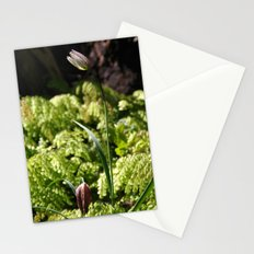 Chocolate Lilies Stationery Cards