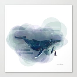 Alphabetical Animals – H for Humpback Whale Canvas Print
