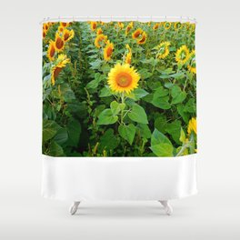 Look the Other Way Shower Curtain