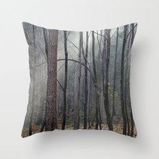 Magical winter light Throw Pillow