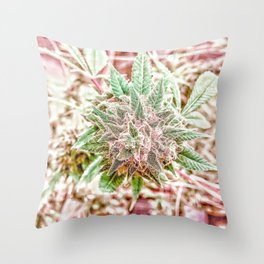 Flower Star Blooming Bud Indoor Hydro Grow Room Top Shelf Throw Pillow