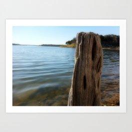 Water Logged Art Print