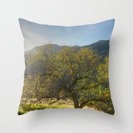 Sun and Tree Throw Pillow