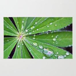Raindrops on a Lupin Leaf Rug