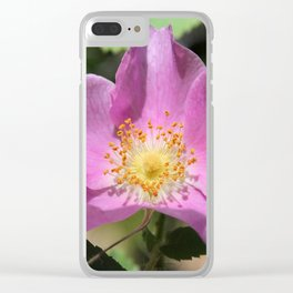 One Wild Rose Clear iPhone Case