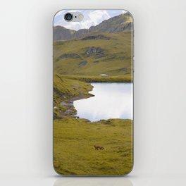 Wild Fox 2 iPhone Skin