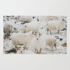 Icelandic Sheep Rug