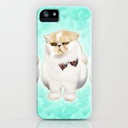 Hyseymour iPhone Case