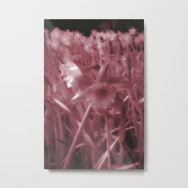 Infra-Red Daffodils Metal Print