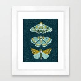 Lepidoptery No. 8 by Andrea Lauren  Framed Art Print