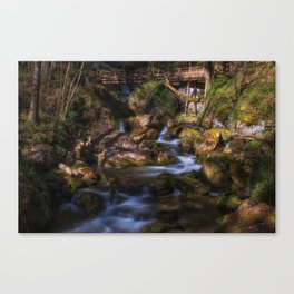Myrafalls in lower Autria Canvas Print