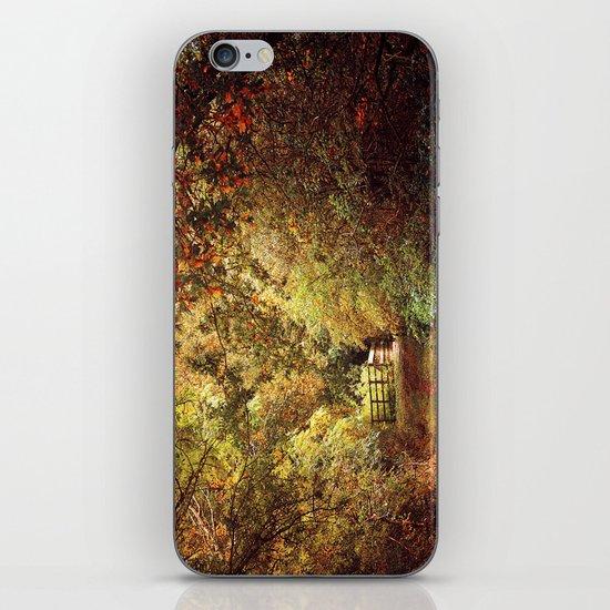 Autumn Weavers iPhone & iPod Skin