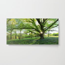 To Swing On The Tree Of Hope Metal Print