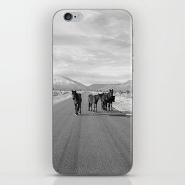 Spring Mountain Wild Horses iPhone Skin