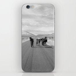 Spring Mountain Wild Horses iPhone Skin