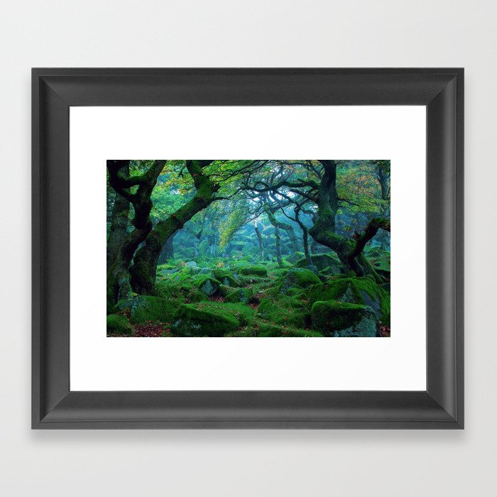 Enchanted forest mood Gerahmter Kunstdruck