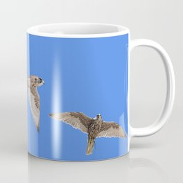 Falconry Composite, Bird of Prey Coffee Mug