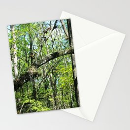 Intentions Derailed Stationery Cards