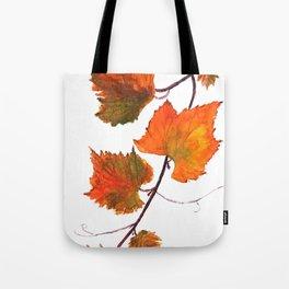 grapevine in autumn Tote Bag