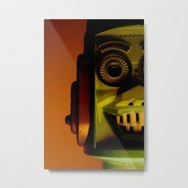 Big Loo Metal Print
