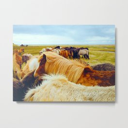 Huddle of Horses Metal Print
