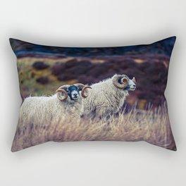 Black face sheep on the Isle of Skye, Scotland Rectangular Pillow