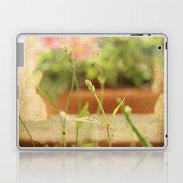 Anarchy in Planter Laptop & iPad Skin