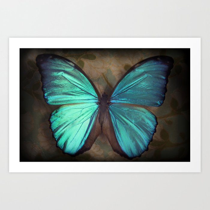 Vintage Butterfly Art Print