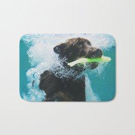 Dog Aquatic Bath Mat
