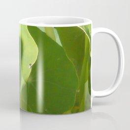 Nasturtium Leaves Coffee Mug