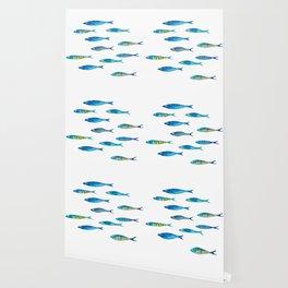 tropical minnows Wallpaper
