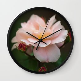 Creme Color Rose with Red Buds Wall Clock