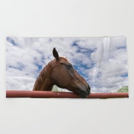 Profile of Brown Horse Looking over Fence with Clouds Beach Towel