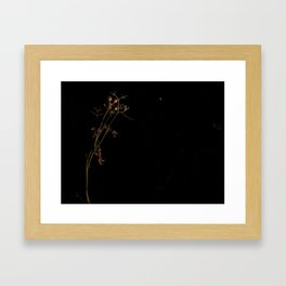 Nighttime Cilantro and Moon Framed Art Print