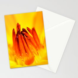 With Time (Original Orange) Stationery Cards