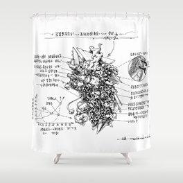 examination Shower Curtain