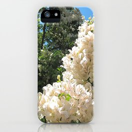 Crisp Afternoon iPhone Case