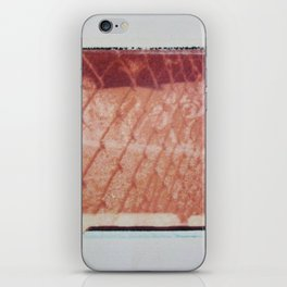 FENCE iPhone Skin