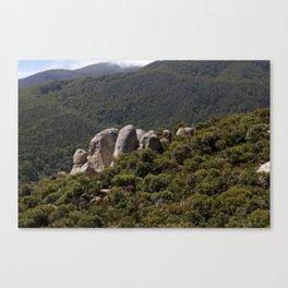 Rock Outcrop Mt Oberon Canvas Print
