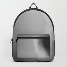 shade Backpack